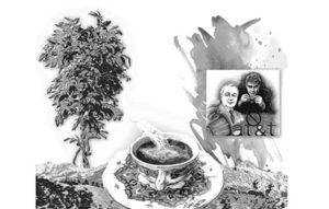 القهوة والكاكاو والتكنولوجيا الفائقة
