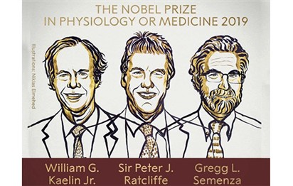William Kaelin and Gregg Semenza of US, Britain's Peter Ratcliffe win Nobel Medicine Prize