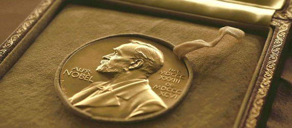 December Nobel peace prize award ceremony to be scaled down because of coronavirus